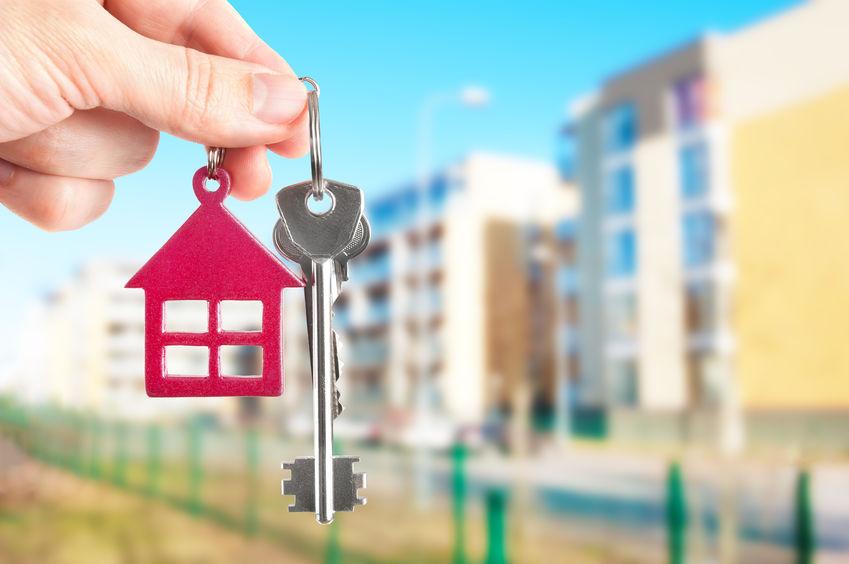 Gestion locative : les baux d'habitation et les obligations professionnelles
